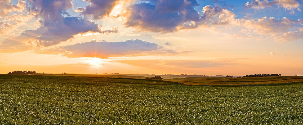 Protect Our Land's Future - Union County, Iowa